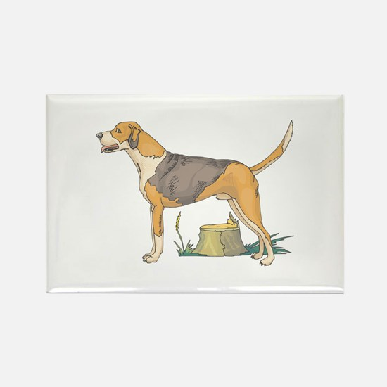 American Foxhound Rectangle Magnet (100 pack)