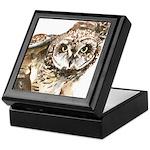 Pueo Hawaiian Owl Keepsake Box