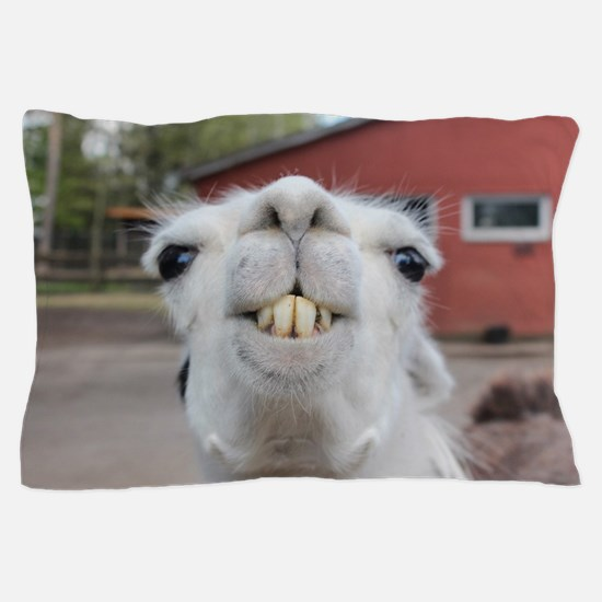 Cute Llama Pillow Case