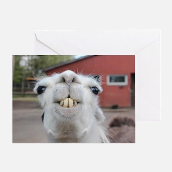 Unique Llamas Greeting Card
