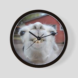Funny Alpaca Llama Wall Clock