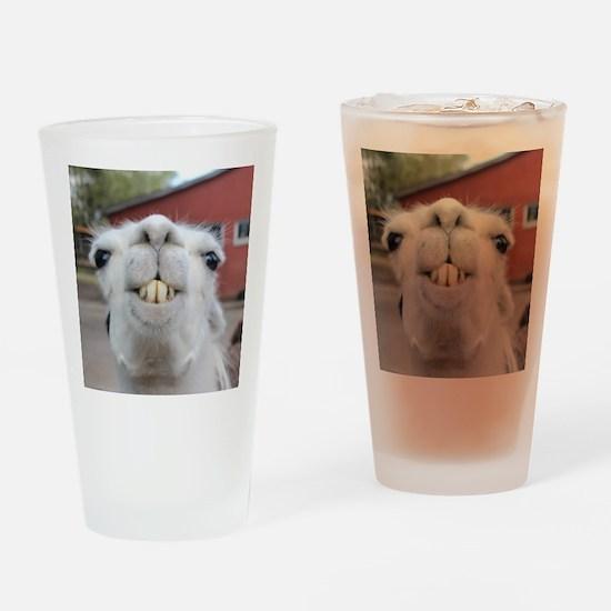 Funny Alpaca Llama Drinking Glass