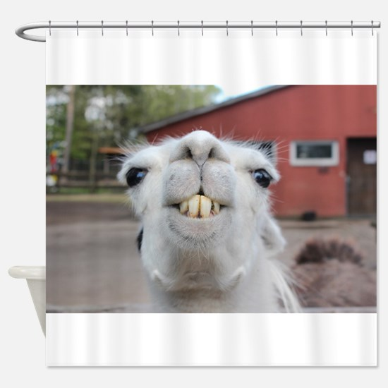 Funny Alpaca Llama Shower Curtain