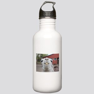 Funny Alpaca Llama Stainless Water Bottle 1.0L