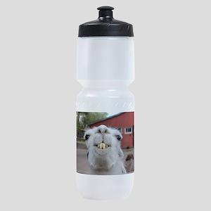 Funny Alpaca Llama Sports Bottle
