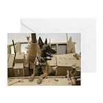 Belgian Malinois! Greeting Cards (10 pack)