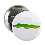 Green Moray Eel 2.25