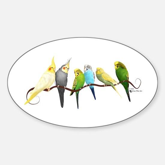 Parakeets & Cockatiels Decal