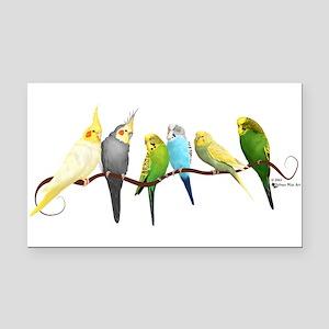 Parakeets & Cockatiels Rectangle Car Magnet