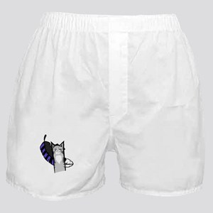 Jayfeather Cartoon Boxer Shorts