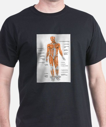Cute Human body T-Shirt