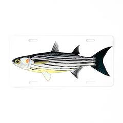 Cape Verde Mullet Aluminum License Plate
