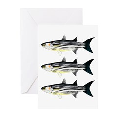 Cape Verde Mullet Greeting Cards