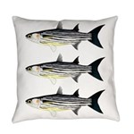 Cape Verde Mullet Everyday Pillow