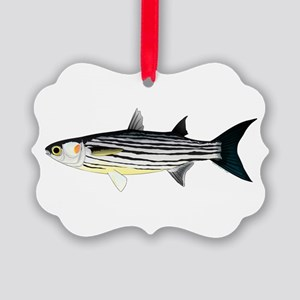 Cape Verde Mullet Ornament