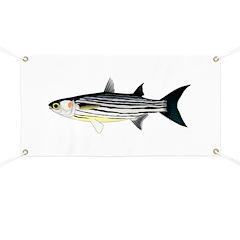 Cape Verde Mullet Banner