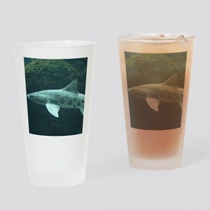 LEOPARD SHARK Drinking Glass