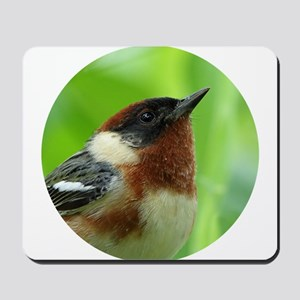 Bay-breasted Warbler Mousepad