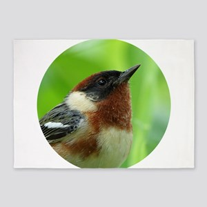 Bay-breasted Warbler 5'x7'Area Rug
