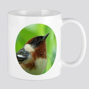 Bay-breasted Warbler Mugs