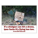 Texas Drone Delivery Failure Posters