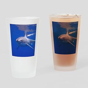 GREAT WHITE SHARK 4 Drinking Glass