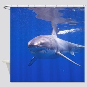 GREAT WHITE SHARK 4 Shower Curtain