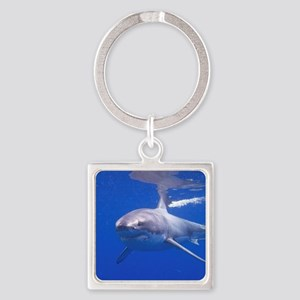 GREAT WHITE SHARK 4 Square Keychain