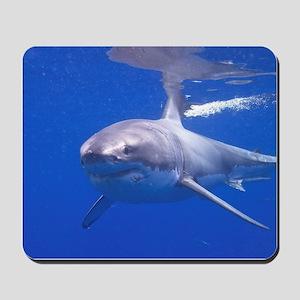 GREAT WHITE SHARK 4 Mousepad