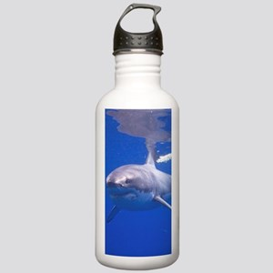 GREAT WHITE SHARK 4 Stainless Water Bottle 1.0L