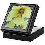 Evening Primrose Keepsake Box