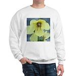 Evening Primrose Sweatshirt