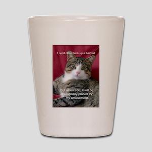 Cat Meme Shot Glass