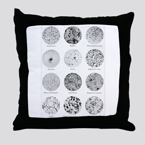 Bacterial Identification Chart Throw Pillow
