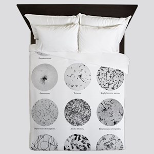 Bacterial Identification Chart Queen Duvet