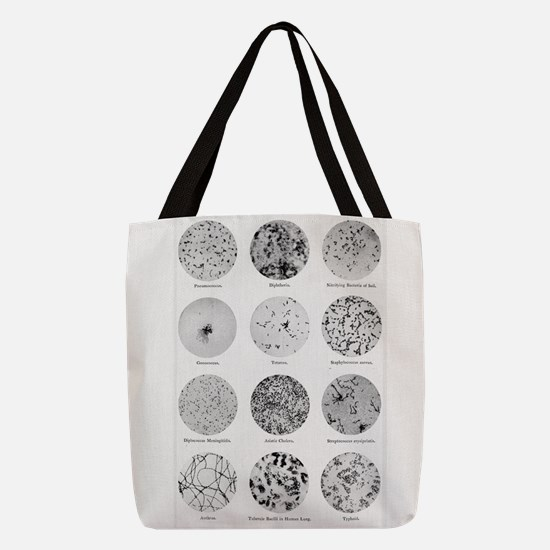 Bacterial Identification Chart Polyester Tote Bag