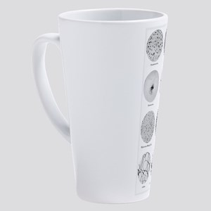 Bacterial Identification Chart 17 oz Latte Mug