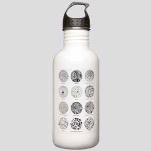 Bacterial Identificati Stainless Water Bottle 1.0L