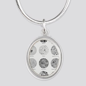 Bacterial Identification Char Silver Oval Necklace
