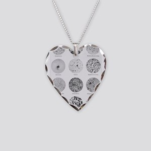 Bacterial Identification Char Necklace Heart Charm