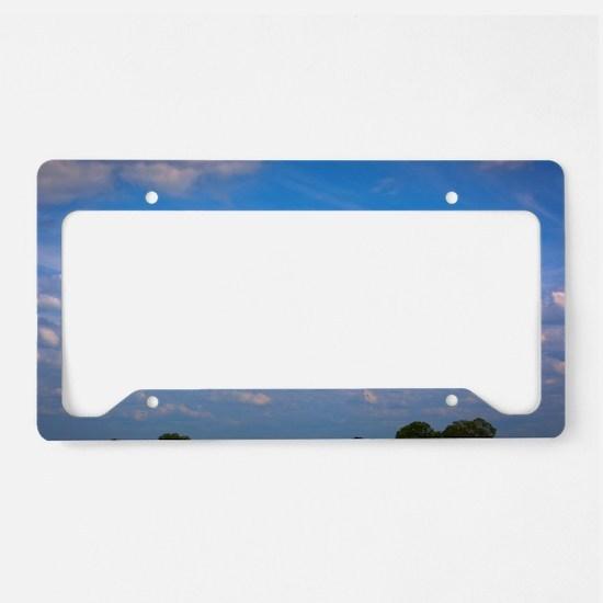 Cute Display License Plate Holder