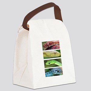 Nature's Rainbow: Snakes Canvas Lunch Bag