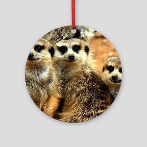 Meerkat Family Portrait Round Ornament