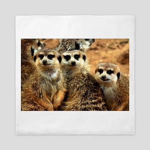 Meerkat Family Portrait Queen Duvet
