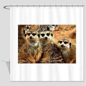 Meerkat Family Portrait Shower Curtain