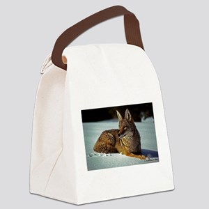 Coyote relaxing in the snow Canvas Lunch Bag
