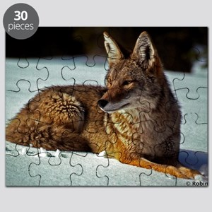 Coyote relaxing in the snow Puzzle