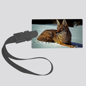 Coyote relaxing in the snow Large Luggage Tag