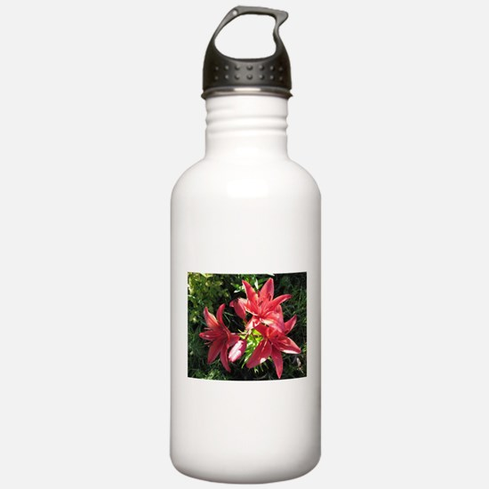 Deep Pink Hybrid Asiat Water Bottle