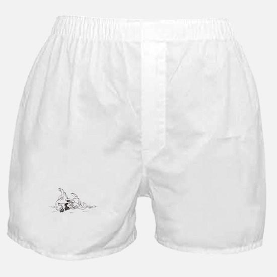 """""""Happy Feet"""" Leonberger Dog Boxer Shorts"""